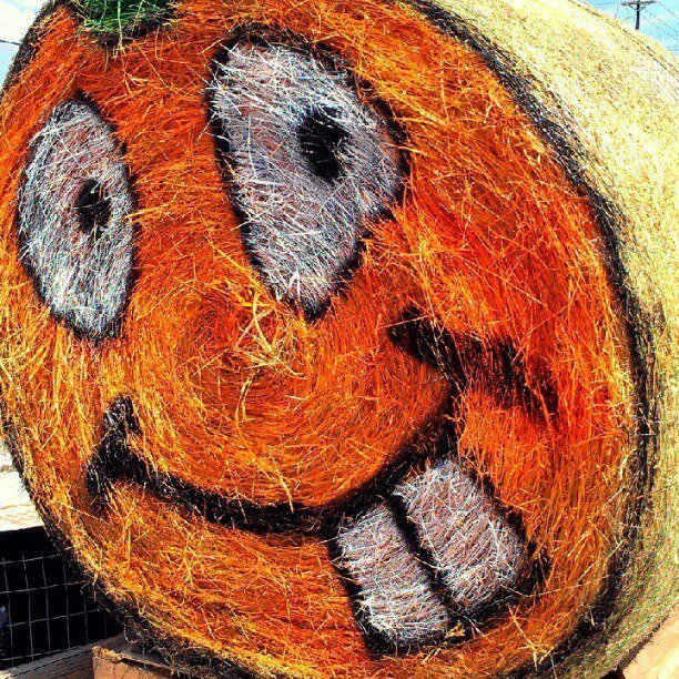 Hay bale as pumpkin (Instagram photo by Sheila Scarborough)